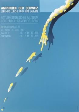 AMPHIBIEN DER SCHWEIZ – LEBENDE LURCHE UND IHRE LARVEN – Naturhistorisches Museum der Burgergemeinde Bern –, Claude Kuhn