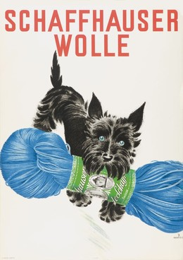 Schaffhauser Wolle, Franco Barberis